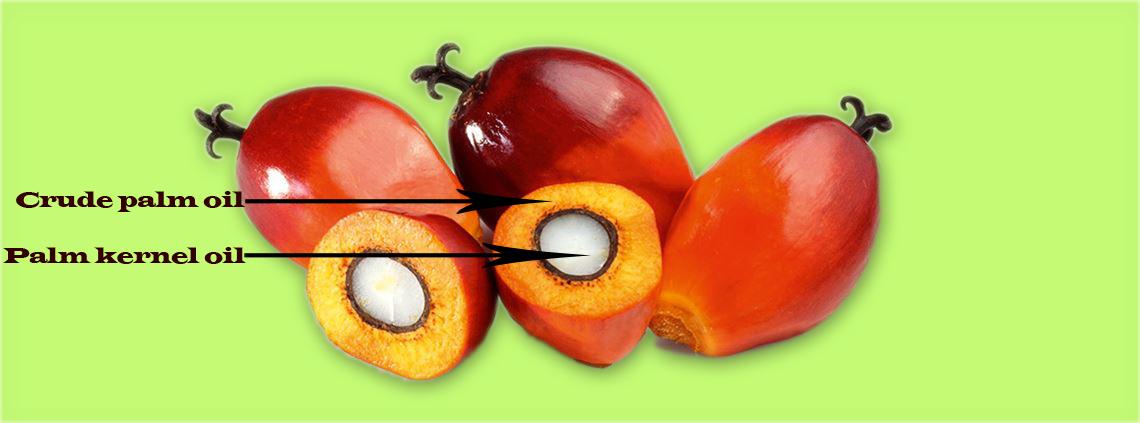 Palm Oil – Better, Healthier & Tastier